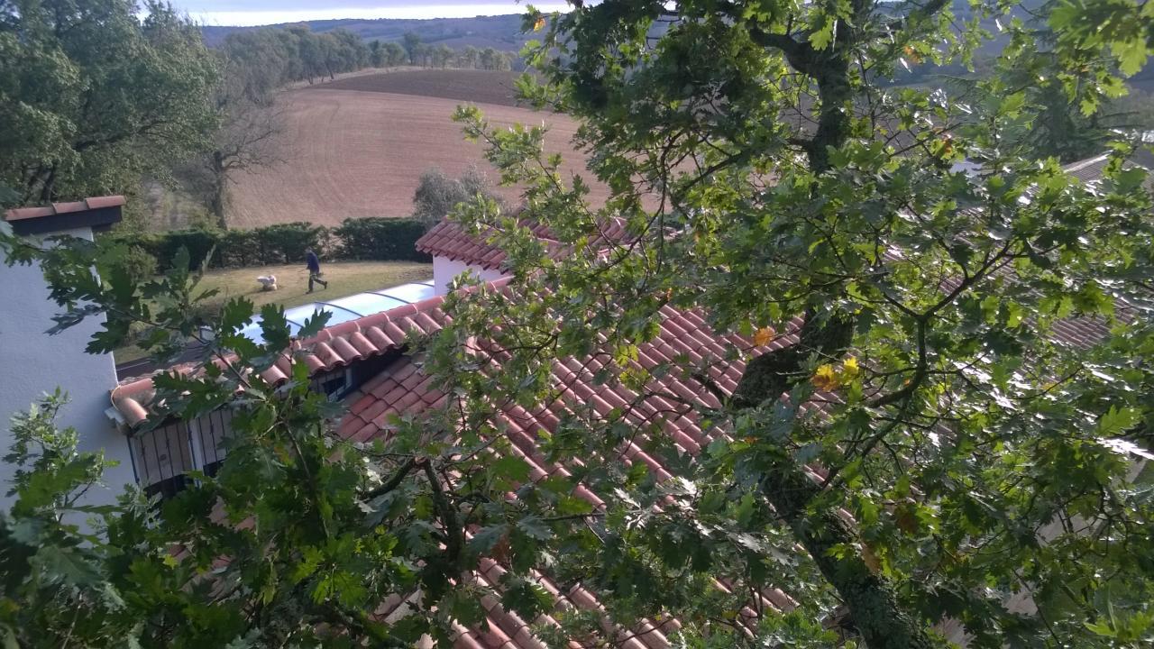 Nos plus belles vues for Entretien jardin fonsorbes